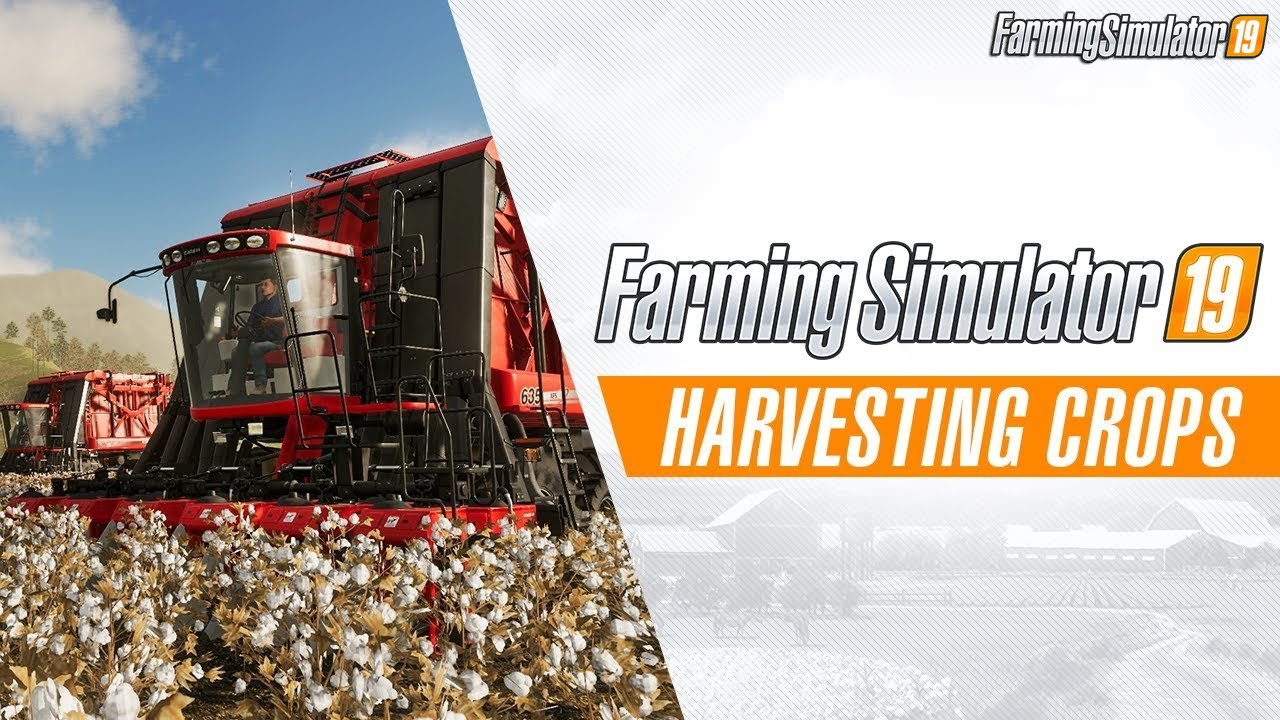 Harvesting Crops Trailer - Farming Simulator 19