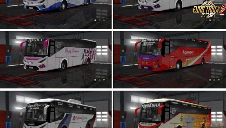 SKS Bus Full Pack for Ets2
