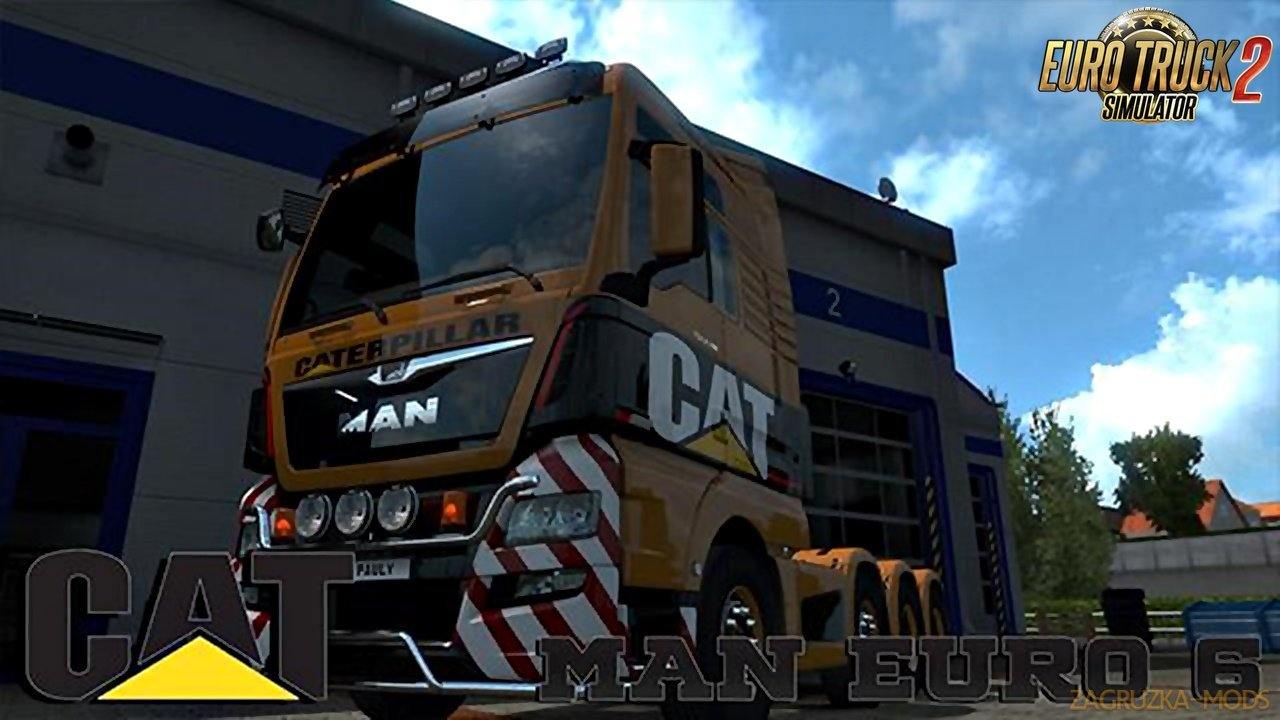 CAT Skin for MAN Euro 6